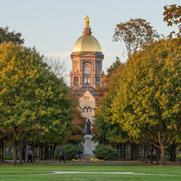 Irish and Notre Dame STEM students encouraged to apply for a Naughton Fellowship