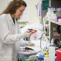 Harper Cancer Research Institute hosts 7th Annual Cancer Research Day