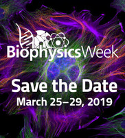 Biophysics Week 2019 Savedate