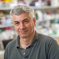 Mobashery lands 2019 Kaiser Award from The Protein Society